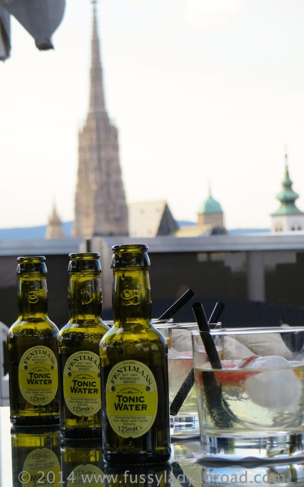 3 gins and stephansdom